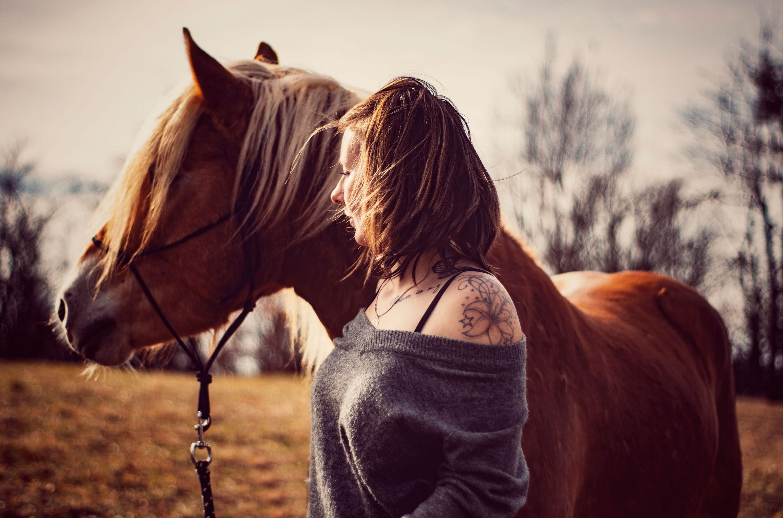 Tierfotografie Pferdeshooting Naturverbundenheit